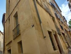 モンペリエ、古本屋さんへの道