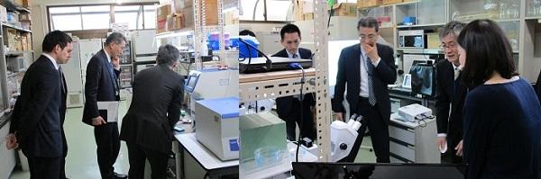 両生類研究センターを視察する磯谷研究振興局長
