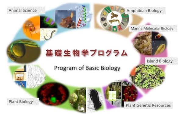 基礎生物学プログラムイメージ画像