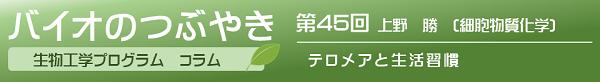 バイオのつぶやき第45回上野勝准教授