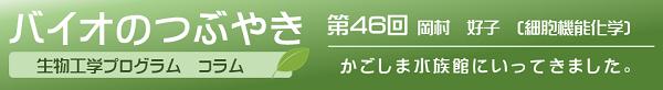 バイオのつぶやき第46回岡村好子准教授「かごしま水族館にいってきました」