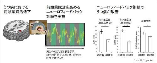 本研究における成果(図)