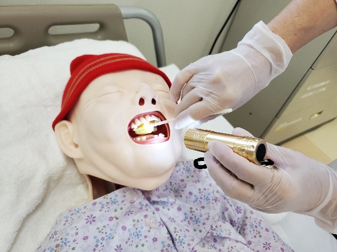 口腔衛生管理実習を実施している様子