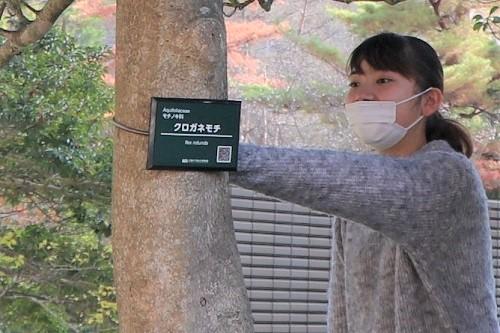 学生等が協力し樹々にプレートを取り付けました