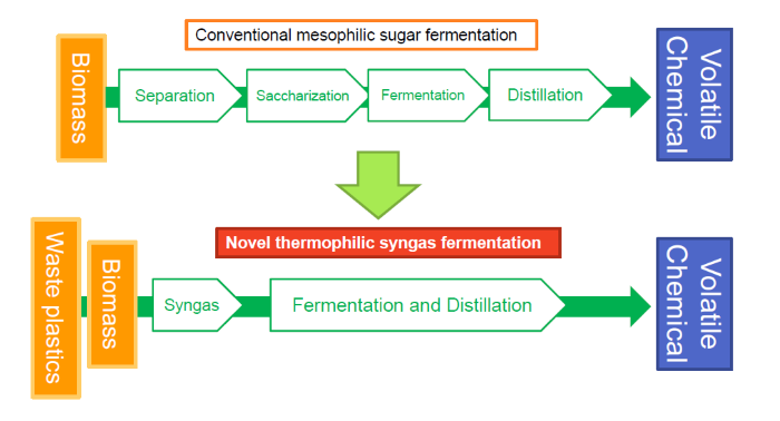 Novel thermophilic syngas fermentation process