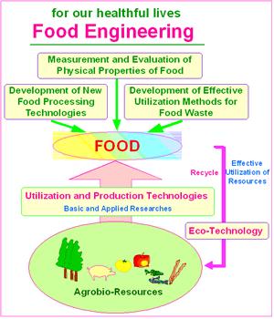 食品および食品製造技術に関する研究