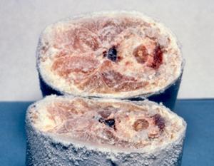刃物を使用しない魚体の凍結切断加工