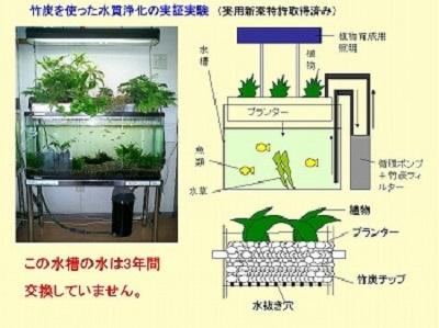 竹炭を使った水質浄化の実証実験