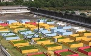 屋上実験風景(広島大学大学院生物圏科学研究科)