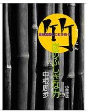 『竹炭のふしぎな力—温暖化対策の可能性をさぐる』(小峰書店)