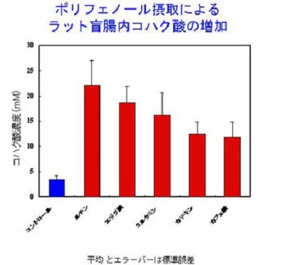 ポリフェノール摂取によるラット盲腸内コハク酸の増加の図