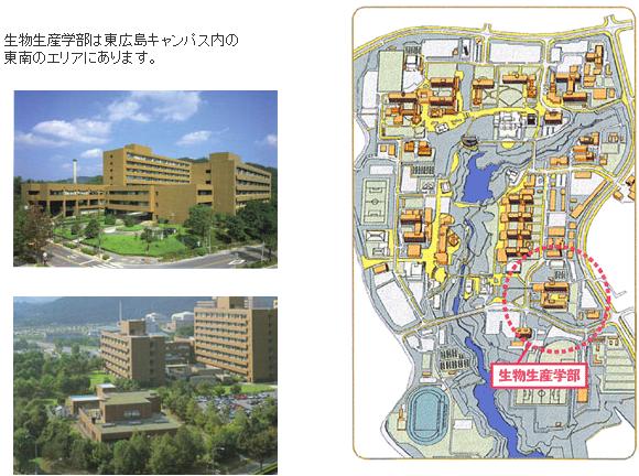 キャンパスの写真とマップ