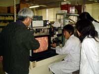 顕微鏡で卵巣組織を観察している様子