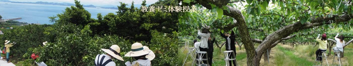 地(知)の拠点大学による地方創生推進事業 体験授業