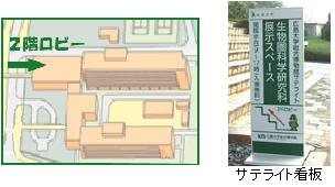 C棟2階ロビーのマップと写真