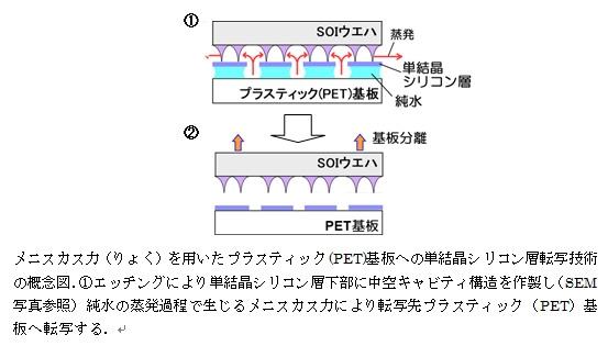 図1 メニスカス力(りょく)を用いたプラスティック(PET)基盤への単結晶シリコン層転写技術の概念図