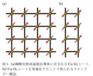 図1.(a)銅酸化物高温超伝導体に含まれるCu-O2シート。(b)Cu-O2シートを単純化することで得られるスピンラダー構造。
