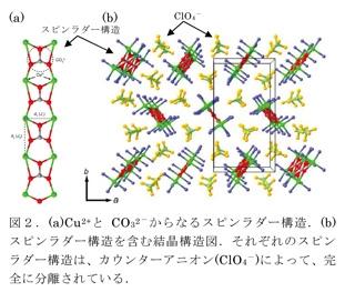 図2.(a)Cu2とCO32-からなるスピンラダー構造。(b)スピンラダー構造を含む結晶構造図。