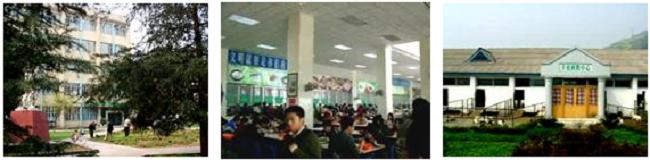 左:四川農業大学動物科学院棟 中央:四川農業大学学生食堂 右:四川農業大学家畜舎
