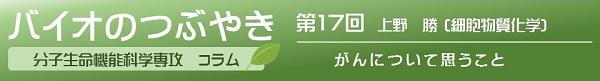 バイオのつぶやき第17回上野勝准教授「がんについて思うこと」