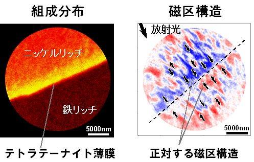 図4:界面近傍の磁区構造と組成分布