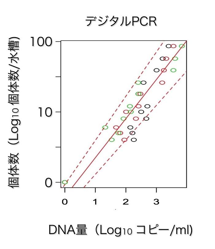 図2 水槽内のコイに特異的な環境DNA量と個体数(匹数)の関係