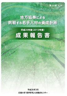 平成25年度(2013年度)成果報告書 表紙画像