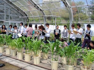 植物栄養生理学実験実習