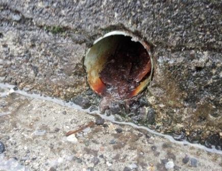 写真:水酸化鉄