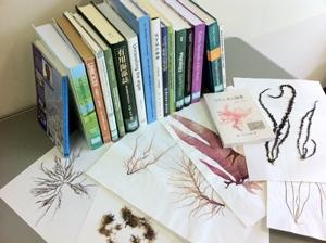 Taxonomic resources including herbarium specimens and literature