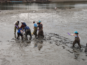 International students joined the observation of a tidal flat
