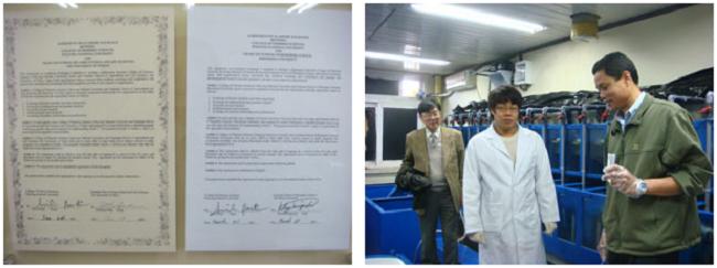 左:学部長室に展示されていた本研究科との国際交流協定書(右側) 右:研究室内での実験風景