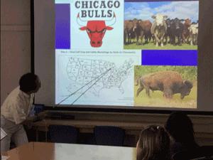 シカゴの畜産業は