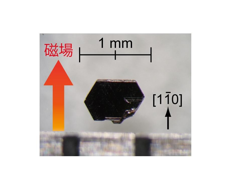 図2. PdCoO2の単結晶の写真
