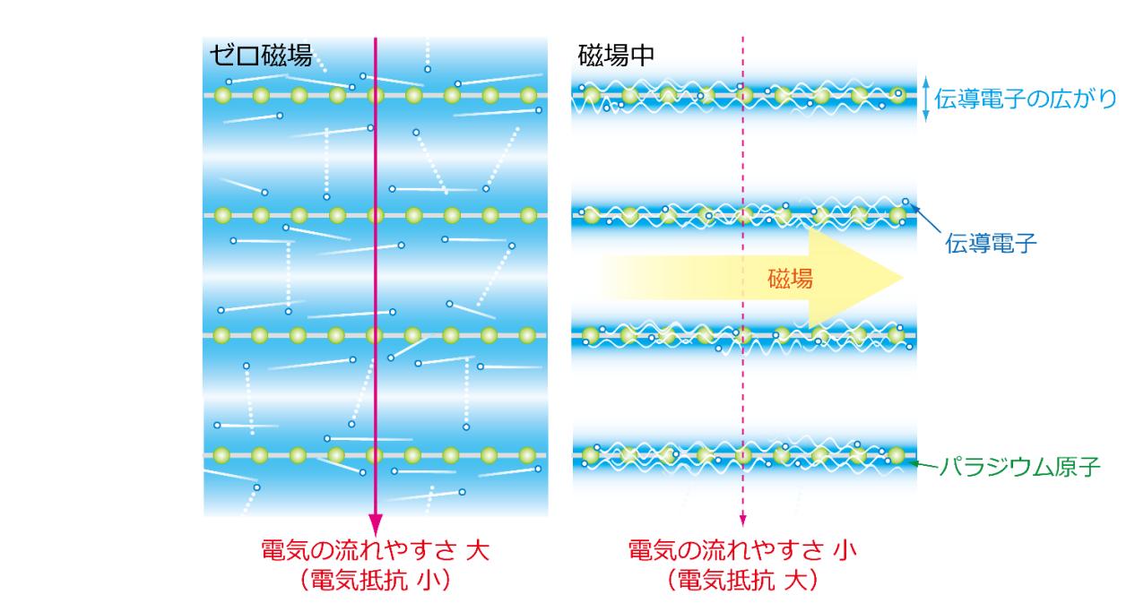 図4. 本成果で発見された巨大な磁気抵抗効果のメカニズムの模式図