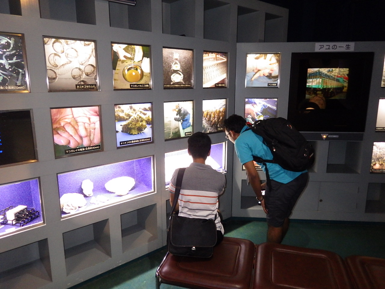 Fisheries and Marine Biology Program