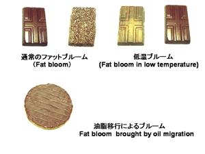 チョコレート油脂(ココアバター)の物理化学的変化による品質の劣化現象(ファットブルーム現象)