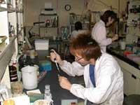 生物機能開発学専攻