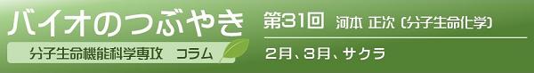 第31回河本正次教授「2月、3月、サクラ」
