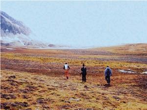 高緯度北極スバールバルの氷河後退域